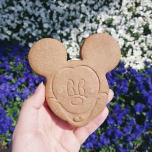 The cute Mickey Mouse ice cream sandwich that I bought at Tokyo Disneyland. Turned out I didn't really like the taste 😣 Prefer the ice bar! It's so fresh 😍💖 . . . #clozetteid #mickeymouse #disneyland #tokyodisneyland #cutefood #tokyo #japan #japantravelogue #japanloverme #ggrep #travelbloggers #여행 #여행스타그램 #도쿄여행 #일본여행