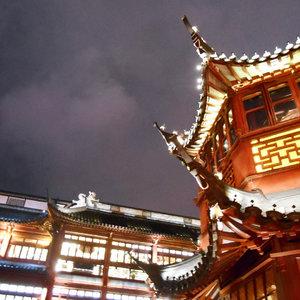 Karena kami memandang langit yang sama dan menghirup udara yang sama (Oksigen kan?). . Gong Xi Gong Xi. (Special request: Hong Bao Na Lai 🤑😽). . 새해 복 많이 받으세요! . . . . . . . . .  #night #lantern #lunarnewyear #springfestival #새해복많이받으세요 #gongxifacai #sky #gloomy #shrine #cibadak #kelenteng #lampion #lamp #chinese #chinesefestival #빰 #clozetteid #ggrep #shanghai #visitshanghai