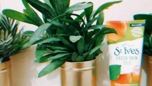 New addition to my skincare routine! @stivesindonesia Fresh Skin Apricot Scrub. Aku suka karena selain membuat kulit wajahku glowing & smooth; scrub ini juga menggunakan bahan-bahan alami seperti buah kenari, apricot, kelapa dan oatmeal, wangi nya pun juga fresh! Laff it! #StIvesID #TurnUpTheGlow • • • • • • • • • • • #clozetteid #beatthatface #indobeautygram #makeuplook #glamvids #makeupfanatic1 #dailymakeup #instamakeup #wakeupandmakeup #tampilcantik #beautybloggerindonesia #beautybloggers #ivgbeauty #makeuptalk #powerofmakeup #ビューティー #春メイク #화장품 #메이크업 #コスメ #メイク動画 #アイメイク #プチプラ #인스타뷰티 #beautyvlogger #ragamkecantikan