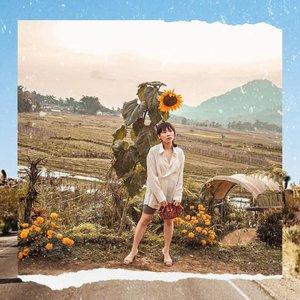 Never met a sunflower I didn't like. • • • • • • • • • • #clozetteid #ootdsubmit #beautifulmatters  #darlingdaily #lookbookindonesia #dametraveler #theheartcaptured #thehappynow #wheretofindme #ファッション #스타일 #コーデ #littlestoriesofmylife #neutraltones #alliseeispretty #todaysgoodthing #slowandsimpledays #momentsofmine #thesincerestoryteller #ofsimplethings#postitfortheaesthetics #myeverydaymagic