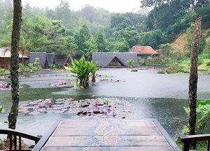 Gorgeous view from where we sat for lunch yesterday 🌿💐🌷 . . . . #lotuspond #greenery #imahseniman #exploremore #pond #landscape #exterior #layout #restaurantdesign #jalanjalan #wisata #bandung #lembang #wheretogo #indonesia #yktripdiary #clozetteid