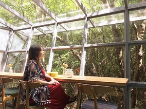 December is here!Love the interior with glass windows looking through the mangrove forest. Feeling so peaceful and calming �New gelato place in Jimbaran area, too bad they don't have instagram yet....#bali #mangrove #mangroveforestbali #mangroveforest #gelato #balicafe #baliblogger #clozetteid #calm #peaceful #serene