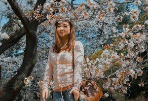 Dibawah pohon sakura.#sakura #cherryblossom #shinjukugyoen #garden #Japan #taman #Jepang #igtravel  #instadaily #clozetteID #igers #igbeauty #ootd #potd #lotd #outfit #pink #flower #love