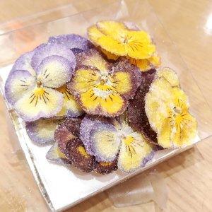 Snacking some edible flowers today.#flowers #ClozetteID #edibleflower #love #yums #beautiful #beauty #veganfriendly #vegan #lifeisbeautiful