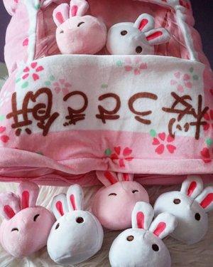 World of #bunnies 🐇🐰🐇🐰 #cutenessoverload #rabbit #plushies #clozetteID #love #pink