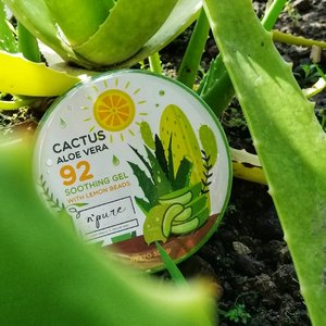 Ternyata aq cocoknya pake produk lokal.  Tp soothing gel nya @npureofficial ini beneran bagus sih. 😍😍😍  Kandungannya ga cuma aloe vera, tp ada cactus ama lemon jg. Dipake buat tangan, kaki, muka dan rambut. Serbaguna bgt. Sukaaaaa.   #leaf #nature #flora #vegetable #healthy #health #flower #garden #soothinggel #soothinggelaloevera #skincare  #skincareproducts #skincarehalal #skincareroutine #skincareaddict #naturalskincare #skincarelover  #skincareblogger #ClozetteID