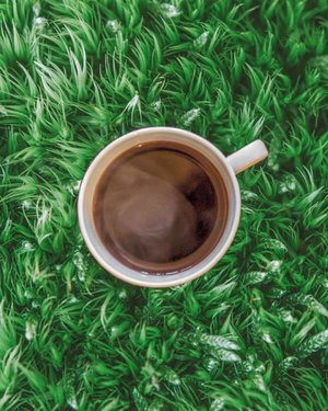 Not sure whether I need a cup of coffee right now or I just need to be outside. *sigh**diposting di tengah-tengah perjuangan menerjang macet Jakarta jam pulang kantor*.....#coffee #black #blackcoffee #frenchpress #nature #grass #earthlings #green #vsco #clozetteid