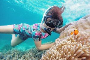 This was the best part of snorkeling in Ujung Kulon. A pose with Nemo .. eh clown fish! 😅😅 . For you who's curious for the trip to Ujung Kulon, I was went with @ideatripindonesia. The trip was so smooth with lot of activities. Go check their page for what their offering! Oh not to forget @bantenvacation as well. Thank you for the documentation. 😊 . . . . . #ujungkulon #ujungkulonnationalpark #cidaon #snorkeling #swimming #beach #sea #underthesea #clownfish #nemo #travel #travelgram #instatravel #blogger #travelblogger #gopro #vsco #instadaily #instagood #instamood #clozetteid #like4like