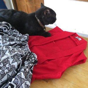 Ferrol and CherryBelle's uniform 💕 matching banget gak sih warnanya, bro and sis.. #sofiadewifashiondiary #clozette #clozetteid #sofiadewico #redandblack #canonIndonesia #kutubaru #batikchic
