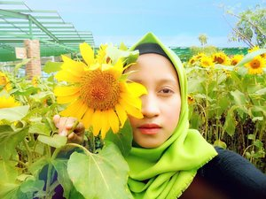 Keep your face to the sunshine and you cannot see the shadow. It's what sunflowers do -Helen Keller🌻💞••••*No alis-alis club😂#RatnasasDiary #ClozetteID #Hijab #PhotoOfTheDay #Sunflower #Sun #Flowers #Bandung #ParisVanJava