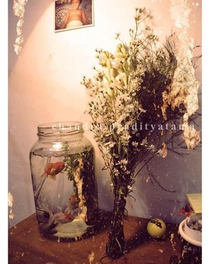 Foto ini foto lama. Aku jadi keingetan gara-gara @wilsa_3010 ngasih tahu aku soal ikan-ikan dan hiasannya.Jadi dulu pas pacaran, circa 2012-an, @chandrapradityatama pernah bikin surprised di kost.1. Bikinin aku lampu tidur yang didapat dari loakan, terus dimodif sendiri, karena dia ngerti aku suka tidur pakai lampu kuning.2. Bikinin aquarium yang dihias pakai bunga-bunga dan ikan-ikan lucu, katanya biar nemenin aku kalau aku lagi sendirian.3. Pakai acara hias kost dulu sebelum aku pulang kantor dan aku kaget kenapa dia bisa seromantis ini hahaha.Jujur seneng buwanget karena Mas Didit bukan tipe yang gampang romantis kayak gini. Bikin surprise itu kayak effort banget karena sekalinya terwujud, dia akan all out. Karena itulah, aku enggak banyak berharap disurprise-surprise-in lagi atau yang berbentuk keromantisan lainnya. Sekarang, di dalam pikiranku, romantis itu gampang. Misal aku minta rendang, kamu akan beliin tanpa banyak alasan.P.S: habis makan rendang.Tapi kenapa bahas ikan sampai jadi rendang?#clozetteid
