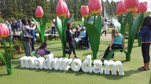 Find me, where I am ? 🙊🙊 haha still about Madurodam. The park is based on true dutch stories that are related through miniatures. Kalau km visit madurodam km bakal liat miniature dr seluruh kota dibelanda. Tiket masukny 20 euro per org. 🙈  #clozetteid #starclozetter #sakuralisha #madurodam #denhaag #belanda #holland #netherland #netherlands #eropa #europe #europetrip #miniature #miniatur #trip #wisata #holiday #liburan #jalanjalan #vacations #vacation #traveller #travellife