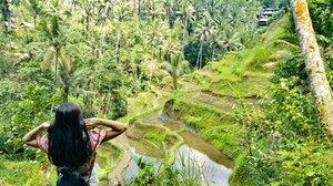 Wonderful Indonesia 🌴🌾🍃 #lisalimtravels #visitubud #visitbali  #clozetteid #starclozetter #tourism #balivibes #balipedia #balilife #exploreubud #wonderfulindonesia