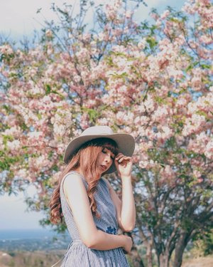 Sakura in Sumba 🌸🌸🌸..📷 @williamiskandar .....#sumba #eastnusatenggara #ntt #nusatenggaratimur #exploresumba #sumbatimur #sakura #clozette #clozetteid #portrait #wonderfulindonesia #travel