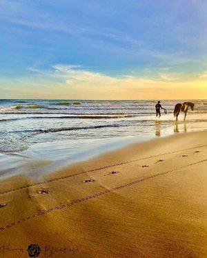 🌊 Peaceful 🌞 •••#peaceful #bliss #horse  #horsephoto #beachvibes #beachlife #beachphotography #blackroseartproject #shotoniphone #iphonephoto #iphonephotography #clozette #clozetteid #yogyakarta #yogyakartaistimewa #qualitytime #beautifulindonesia #clozette #clozetteid #idontplaniplay #idontplanipray