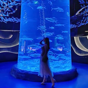 "Throwback to the time when I feel like a #Mermaid 🧜🏻‍♀️ whilst in awe exploring @jakartaaquarium and listen to the iconic ""Under The Sea"" 🦀🐠🐙🐬🐡 Truly mesmerizing 🤍.....#underthesea #jakartaaquarium #placetogojkt #pearlofthesouthsea #explorejakarta #outfitoftheday #ootd #inspiration #womenfashion #fashionistas #elegant #instastyle #beautyenthusiast #photooftheday #beauty #makeup #fashiongram #beautyinfluencer #asianblogger #clozetteid #stylediaries #얼짱 #인스타패션 #패션스타그램 #오오티디"