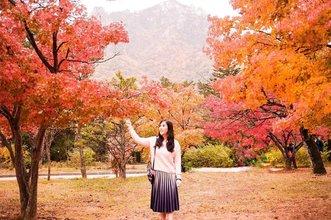 Beautiful in autumn at Mt. Sorak. Lil bit cold but, ut's fine and you will amazed by the amazing view of maple leaves ❤❤ . . . . . . . . . . . . #ootd #photooftheday #beautifuldestinations #bali #seoul #france #paris #ootdspot #jktspot #like4like #nstagramable #maple #switzerland  #postthepeople #travel  #clozetteid  #autumn #beauty #mountsorak #makeup #selfie #japanese #travel #endorse #korea  #korra