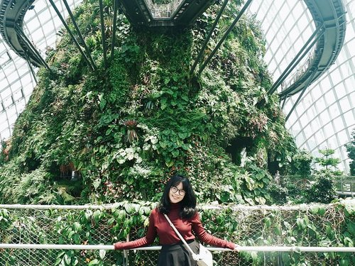 Some people told me, I look younger than my age. especially for the people who don't know me before. Agree or not? How do you think? Hmm... . . . #travelling #singapore #flowerdome #gardensbythebay  #travellinggram #letsgosomewhere #keepexploring #travelworld #clozetteid