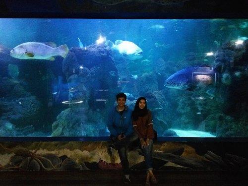 Aquarium Date 💓 . . . #ClozetteID #Couple #l4l #fff #seaworld #Ancol #travelblogger