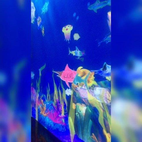 Kalian udah main-main ke #FutureParkJakarta belumm?? Cuma mau mengingatkan mereka udah Open For Public dari 20 Juni 2019 sampai 20 Desember 2019.•My favorite installation is : Sketch Aquarium. Berasa ada di dalem Aquarium besar. Bisa mewarnai hewan-hewan laut, terus di-scan, terus hewannya jadi 'hidup' di Aquarium Digital. What a joy!!!!•Detail harga tiket & jadwal udin lengkap di IG-nya @futureparkjakarta •#ClozetteID #TeamLab  #ArtExhibition #DigitalArt #InteractiveArt #ExploreJakarta