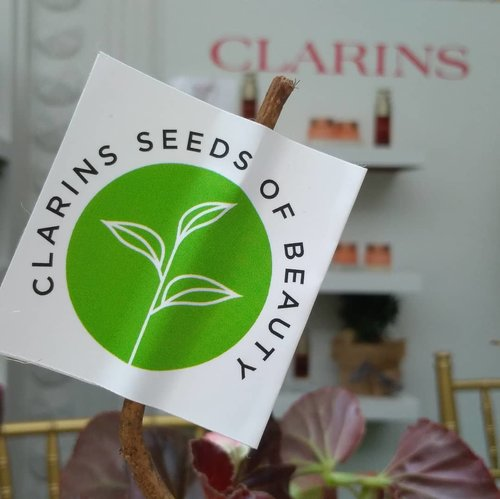 About @clarinsclub.id event! Let's join Clarins Seeds of  Beauty for beautiful world.  How to join? Buy 1 Clarins Double serum = Plant a tree in Indonesia 🌿🌿 #treeforindonesia #clarinsclub #clarinsindonesia #tapforlike #instatoday #instadaily #clozetteid #LoopSquad2018 #beauty #plant