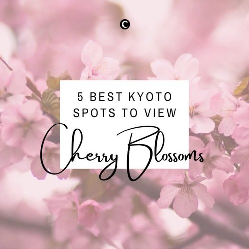 🌸🌸🌸 SPRING HAS SPRUNG 🌸🌸🌸Di Kyoto, cherry blossoms atau bunga sakura mekar pada akhir bulan Maret sampai minggu kedua bulan April. Pada saat itu, biasanya banyak orang yang melakukan hanami, yaitu tradisi Jepang menikmati keindahan bunga sakura. Hanami dilakukan sambil piknik dengan menggelar tikar dan makan-makan di bawah pohon sakura bersama orang-orang terdekat.Kalau nanti pandemi sudah berakhir dan kamu berkesempatan melakukan hanami di Kyoto, jangan lupa untuk mengunjungi 5 best spot untuk menikmati keindahan bunga sakura berikut ini ya, Clozetters!✨#ClozetteID #ClozetteIDVideo #ClozetteXCoolJapan #ClozetteIDCoolJapan