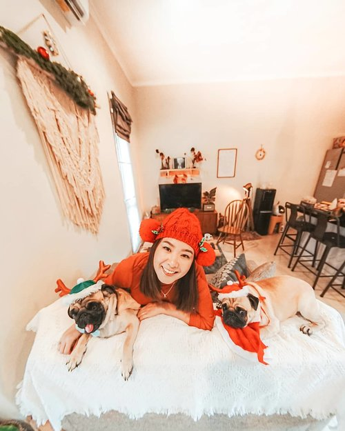 From our family to yours, have a magical and marvelous Christmas! ⛄🎄⛄ #Christmas2019Ps: Bikang n Kentang outfit by @aymeesidarta.petsapparel so cutee! 🤣