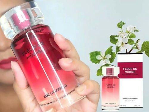 🌵 NEW!!! Satu lagi variant parfum baru dari Karl Lagerfeld yg sudah launching di Indonesia. Fleur de Murier EDP for Woman. 🌵 Wanginya manis, sexy, seger. Love! Enakkkk bgt. Botolnya simpel. Tutupnya dr plastik, jd ngga begitu berat. Di Indonesia baru ada yg 100 ml, but maybe soon akan hadir jg yg 50 ml'nya. 🌵 Thank you @luxasia_id 😍😍😍. 🌵 #parfumreview #luxasia #luxasiaid #fleurdemurier #karllagerfeld #karllagerfeldparis #clozetter #clozetteid #clozettedaily #parfum #parfume
