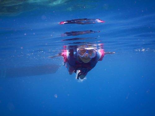 Pada hari ke-4 di Karimunjawa, akhirnya kami memutuskan untuk ikut island hopping! Ada 3 destinasi yg kami kunjungi (2 destinasi menyelam). Salah satunya adalah lokasi para ikan Nemo berada. Tau kan si kecil warna oren putih itu? - Nah foto ini diambil di atas lokasi para Nemo berada wkwk. Maklum yah, ku kan gak bisa menyelam.. . . . . . #blogger #bloggerperempuan #bloggerjogja #nikon #nikonindonesia #nikontravel #travel #travelling #travelblogger #karimunjawa #explorekarimunjawa  #indonesia #exploreindonesia #clozette #clozetteid