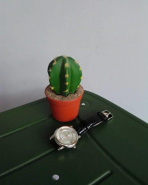 Dulu kalo bepergian, suka banget pake jam tangan. Dua bulan terakhir berhubung masih harus #dirumahaja, jam tangannya masukin ke laci dulu biar nggak kena debu. Trus waktu kemarin beres-beres, liat jam tangan aja langsung kangen bepergian aku tuh. Tapi harus ku tahan demi kebaikan bersama. . Jadi, udah berapa jam kita #dirumahaja? Jam lho, bukan hari. Wkwk . . #clozetteid #jamtangan #workfromhome #wfh #sunday #may #2020 #blogger #lifestyleblogger #mantrianarani