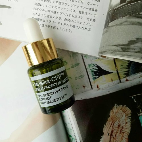 "Back at it again posting  #InaSkincareRecipe 😆  I was triggered to buy this ELENSILIA-CPP green Propolis Ampoule because its ✨✨green propolis✨✨ (at that time I was a sucker for anything green skincare😂😂), which I thought would help me calms down my skin. - It did made my skin looks healthier. Didn't work on my PIH and PIE. The first thing that I notice the most, other than the ""glowing effect"", that it does make me feel my skin more plump and firm and younger... Is it bcs of the MAJESTEM cell? Majestem is an active ingredient which provides a visible lifting and tends to tighten the sagging neck and lift up the cheek (according to Google, lol). I'll definitely gonna stack up more of this when I turn 28!! The texture is quite thick.. But way runnier than the gold version. It feels thick and might be uncomfortable with you have oily skin, so it's best mixed with foundation if you still want to look ✨glowing✨but don't want to feel its ""thickness"". It has a little gold particle in it, which reminds me with Pond's Gold Serum(?) and disappears when it's applied onto skin.  I regret that I didn't buy bottles of this bcs it costs much more expensive in our local online marketplace 😂 I bought it around 75kish for 15ml, while people here sell it 150k-ish.  #koreanskincare #koreanbeauty #idnskincarecommunity #acneproneskin #skincarereview #skincareregimen #beautycommunity #skincarejunkie #skincareaddict #makeupreview #skincareproduct #instaskincare #acne #skincareblogger #skincarecommunity #instabeautyblogger #skincaregeek #acnesurvivor #beautyblogger #bloggerperempuan #clozetteid #intothegloss"