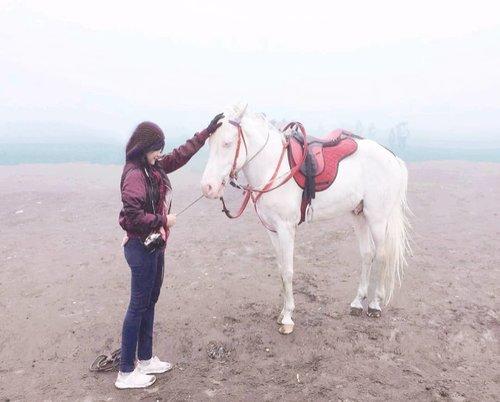 Hey, can I talk to you? My unicorn🦄 bukan yang onlen onlen itu.😬 . When temen butuh, meski ga pernah contact, kamu ada. When you butuh, belum tentu ada temen yang mau bantu..bahkan sekadar untuk ngobrol. Lyfe :) . #unicorn #horse #bromo #tengger #semeru #mount #whitehorse #travel #traveler #traveling #clozetteid