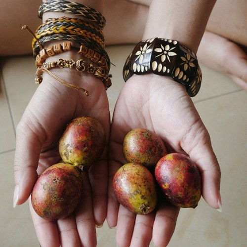 The bracelets and the fruits of Papua😊👍 Fruit Matoa (Pometia pinnata) is a typical fruit of indigenous Papuans.Matoa trees grow tall, and its wood could be for furniture or frame - frame house.😊The fruit is a seasonal fruit which bear fruit in September-October.The flavor is hard to define, such as between a sense of lychee and rambutan fruit. There is also a very sweet taste like fruit kelengkeng.Some call it hairless rambutan 😁#Matoa #Fruit #Papua #Indonesia #Sentani #Jayapura #PesonaSentani #WonderfulIndonesia #Pesonaindonesia #IndonesiaOnly #travel #traveling #instagood #lifestyle #adventures #photooftheday #fashion #bracelets #accessories #clozetteambassador #ClozetteID #@clozetteID