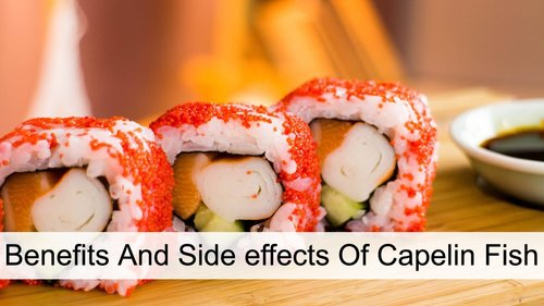 Masago - Benefits And Side effects Of Capelin Fish - Glowy Dowy
