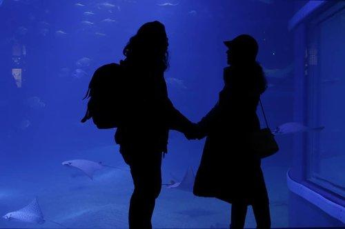 This aquarium date is absolutely his idea 💙  #ClozetteID #Traveling #Osaka #Japan #HuboyWaifuTravelJournal #HuboyWaifuJalanJalanJapan