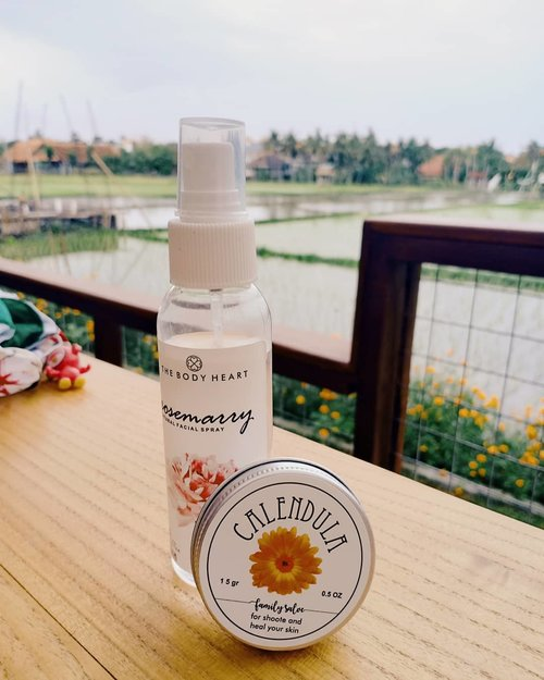 Hero ketika alergi.  Siapa yg belum baca tentang @thebodyheart Calendula Family Salve? Link di bio ya sis. ❤️ #vinasaysbeauty #vsbxthebodyheart #thebodyheart . . . #skinroutine #clozetteid #skincarenatural #skincare #artisanskincare #artisanproducts #toner #facetoner #facialtoner #fotd #faceoftheday #calendulasalve #nature #naturescene #naturalskincare #naturalingredients #skincarebali #bali #cafeincanggu #cafeinbali #vegan #vegancafe #vegancafeinbali #ricefields #sunset