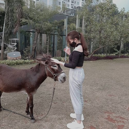 No matter how few possessions you own or how little money you have, loving wildlife and nature will make you rich beyond measure.  #animal #donkey #minidonkey #exploreBSD #scientiasquarepark #teepeebuddies #urbanfamilypark #blogger #influencer #animallovers #nature #selebgram #clozetteid