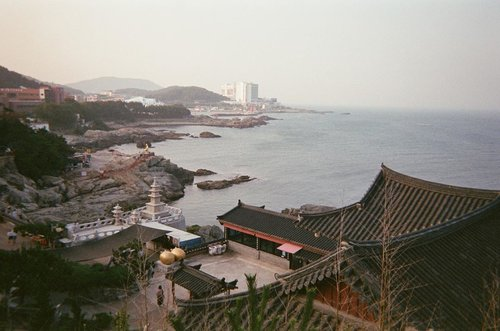 Busan in disposable camera ✨ Anyway, just dropped a new blogpost on #bigdreamerblog 🍒 Click link in bio the read my latest photo diary #BigDreamerInKorea...#clozetteid #travelinkorea #koreatraveling #travelbloggers #haedongyonggungsa #haedongyonggungsatemple #busan #explorebusan #traveloka #ktoid #travelerindonesia #disposablecamera #35mm #filmisnotdead #fujifilmdisposablecamera #busantravel #여행 #여행스타그램 #부산 #부산여행 #旅行 #旅行大好き #旅行記 #해동용궁사