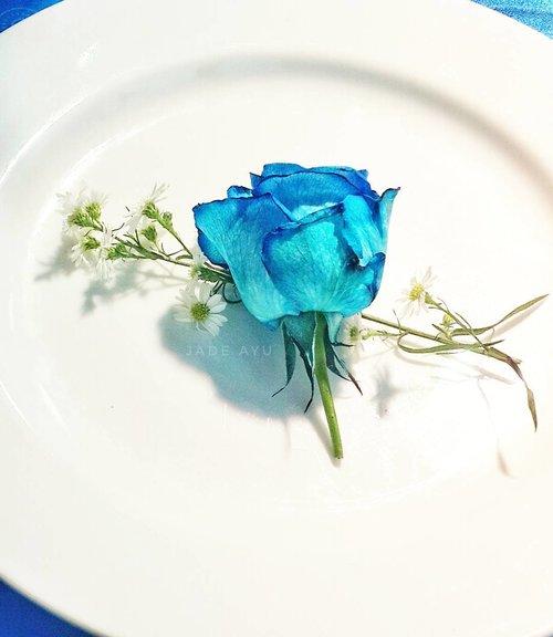 Selamat Hari Rabu dari Bunda yang hampir salah pakein seragam abang Rafasya karena lupa kalau hari ini hari rabu. Ada yang mikirnya hari ini hari selasa juga ? 😊😊😊 . . . #motherlife #motherhood #rose #bluerose #blue #clozetteid