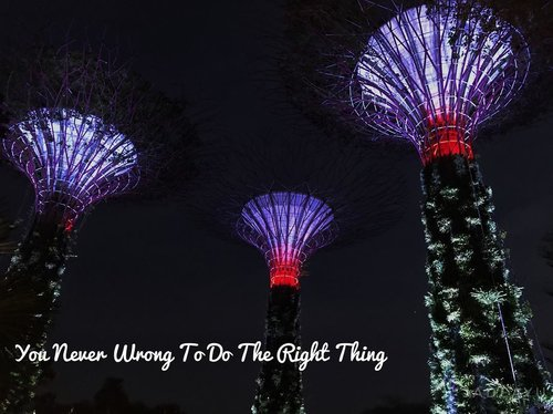 Lovely snapshoot from my last trip. And also lovely quotes. Since sometimes we always afraid of what other people might say. But when you do the right thing, you are never wrong. . . . . #buyutravelling #latepost #singapore #gardenbythebay #supertree #night #clozetteid