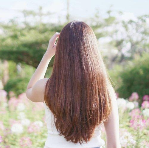 """Rambutku terlihat tebal. Iya ga sih? Aslinya tipis ko, ko bisa terlihat tebal? Kuncinya adalah model rambut, aku pilih model rambut oval dan di layer bawah. Kalau layer atas bisa bikin ramnut terlihat lebih tipis.  Dan dulu sering banget di rebonding, smoothing, itu bikin terluhat tipis karena lepek. Sekarang ga lagi, cukup lurusin pakai @glampalm.id udah awet seharian (rambutku gelombang btw jadi kucatok). Rambutku panjang jadi pasti rontok karena itu ga lupa pakai hair tonic, aku pernah story """"hair tonic mahal"""". Emang beneran mahal (menurutku), karena biasa beli hair tonic under 100.000an dan sekarang cobain merk Jepang Riup yang harganya 5.775 yen.  Untuk rambut aku agak loyal, kalau bagus kenapa ga.  Kalau kamu? Ranbut dirawat dengan apa aja? Share siapa tau bagus dan aku tertarik mencobanya.  #haircare #review #riup #riupregene #hairtonic #hairstyle #haircut #haircolor #clozetteid #cchanel #longhaircut #piccha"""