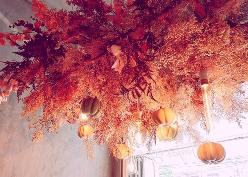 I love fall... They look so beautiful. _________#beauty #carnellinstyle #love #autumn  #motd #lotd #ootd #photooftheday #photography #lookoftheday #pumpkin  #moodoftheday #restaurantdesign #lookbook #style #styleoftheday #ClozetteID#interiordesign  #todaysmood #fall  #colors