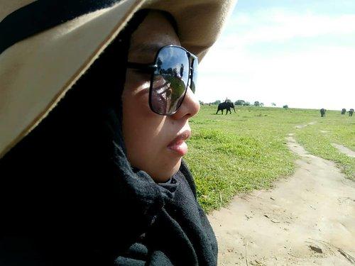 Karena nonton @tulusm di @matanajwa tadi, ingatan kembali ke saat-saat saya pertama kali bertemu gajah di Way Kambas... Excited... Disisi lain, saya tau sih kalau gajah berada digaris merah eksistensi, tinggal sedikit sekali.. Tapi apa yang sudah saya dilakukan? Hanya tau saja?  Membayangkan salah satunya mati saja bikin mata berkaca-kaca.. Akhirnya saya cari tahu tentang gerakan teman gajah, ngapain aja dan apa yang bisa dilakukan? Yuk follow Tulus dan hashtag #TemanGajah nya . #throwback #lampung #waykambas #elephant #animal #instago #go #travel #traveling #instatravel #travelgram #picoftheday #photooftheday #world #travelblogger #bloggerloop #hijab #hijabi #hijabfashion #hijabstyle #clozetteid
