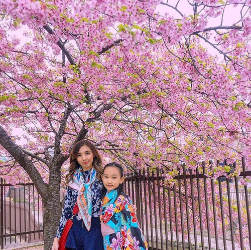 """They say if you dream more than once, it's sure to come true"" 🌸🌸 . . Good night all ✨✨✨ . . . . . #qotd #potd #igtravel #travelgram #travelingfamily #travelwithkids #travelingkids #AureliaGW #kimonostyle #springinkyoto #spring2019 #cherryblossoms #sakura #springinjapan #wanderlust #traveldestination #tbt #visitjapanjp #japantrip #japantravel #jntoid #likes #follow #blogger #travelblogger #travelblog #bloggermom #ClozetteID #StellangelitaInJapan #TheWibowoGoesToJapan"
