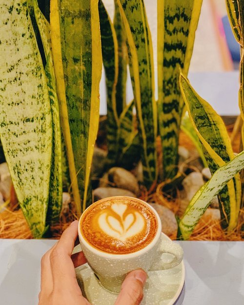The fresh smell of coffee for a mid week holiday......#coffee #coffeeshop #latte #latteart #piccolo #caffeine #caffeineaddict #addiction #chill #midweek #instacoffee #shotoniphone #vsco #clozetteid