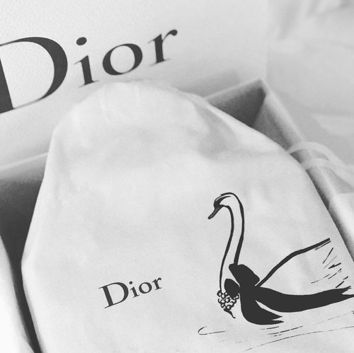 we cant find what i want so we bought this... but thats okay.. Love Love Love #dior #diorbag #ladydior #ladydi #tpf #thebagsoftpf #purseboppicks #clozetteid