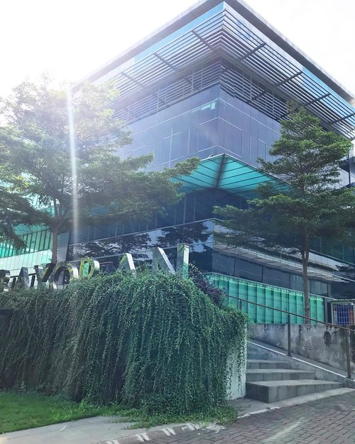 While i'm doin morning walk to the studio, i always passed beautiful building and many green space (i praise Tangerang Selatan for making good efforts for us). So here it is, the building stand tall, the trees and the sun 🌳🌲🌞 Happy Sunday #sunday #happysunday #morningwalk #best #morningview #instagram #instagood #instamood #clozetteid