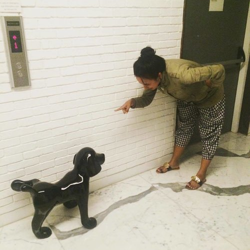 Just for laugh during the dinner break... at @iammorrissey .. I have a black dog in my room as well.. I love every decoration in this hotel 💕  #sofiadewitraveldiary #justforlaugh #iammorrissey #themorrissey #hoteljakarta #amante #sofiadewico #clozetteid #ootd