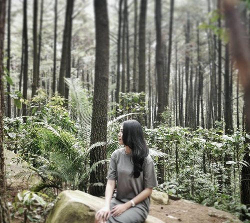 Don't spend your time looking around for something you want that can't be found~ the jungle book . . . . . . . . . . . . . #instagram #instamoment #instagood #instadaily #insta #instatravel #travels #vitrietraveldiary #forest #clozetteid #mondaypost #instalike