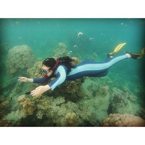 """The seaweed is always greener In somebody else's lake You dream about going up there But that is a big mistake Just look at the world around you Right here on the ocean floor Such wonderful things surround you What more is you looking for""  #underthesea #snorkeling #pulaupramuka #coral #fish #ClozetteID"